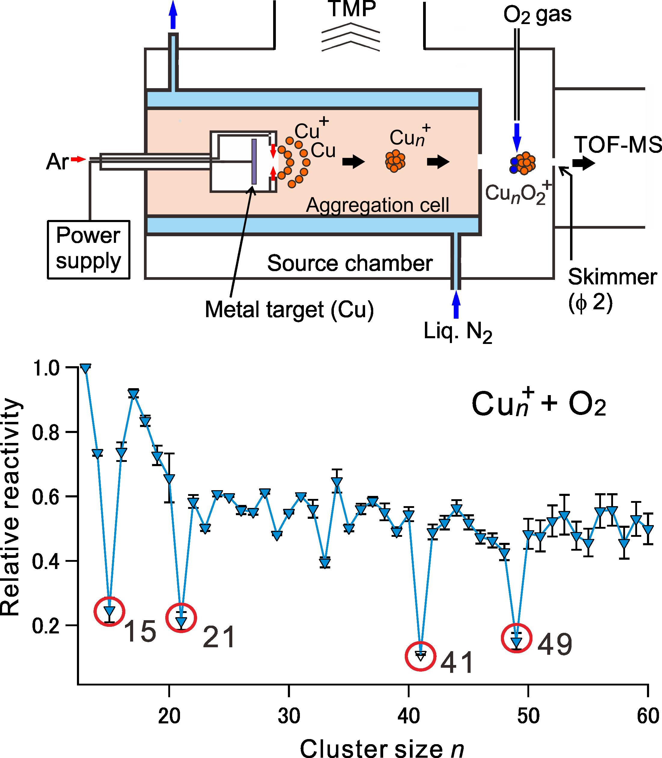 図 クラスター 分布